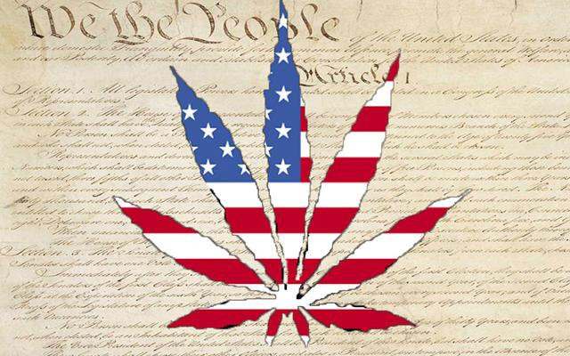 decriminalization of cannabis would be legal essay